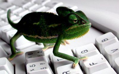 L'adattamento per lavorare nel digitale